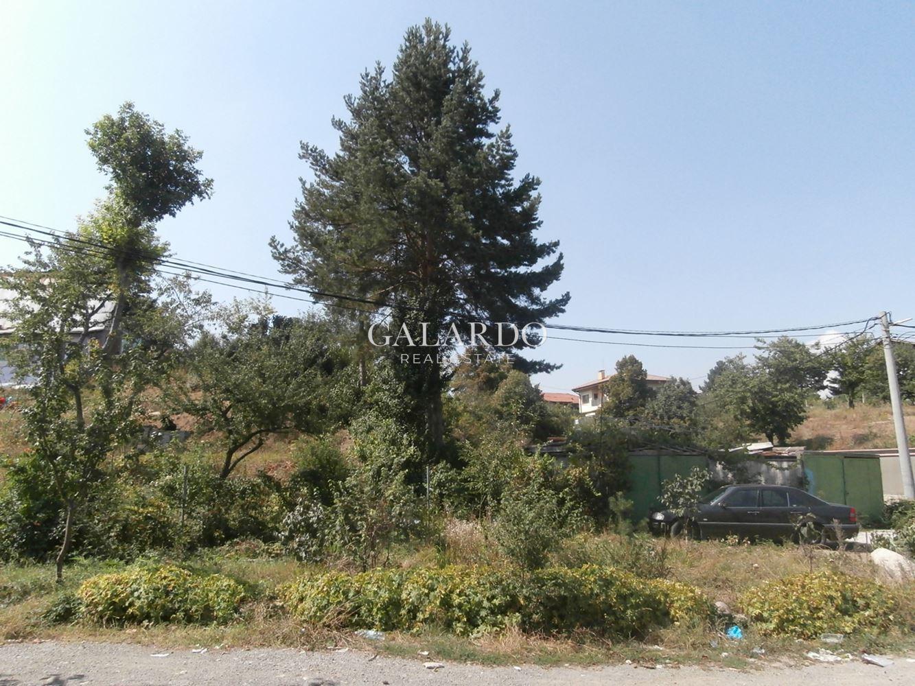 Plot with panoramic view- Kosanin dol